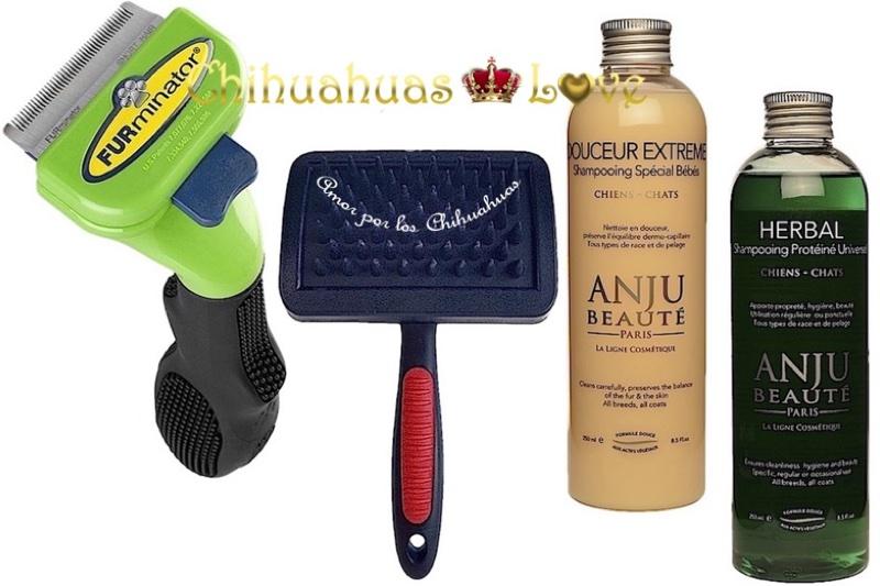 herramientas para cuidado del chihuahua