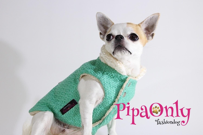 pipa only moda canina